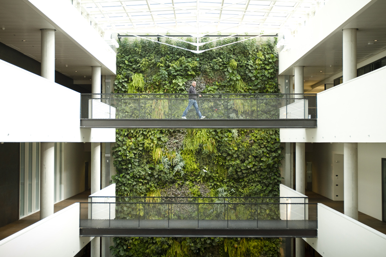 Sundar italia giardini verticali interni ed esterni l - Piante per giardino verticale ...